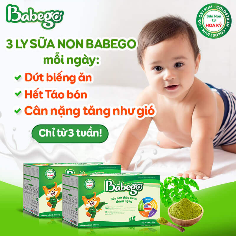 sữa non thảo dược chùm ngây babego 9