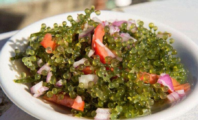 Salad Rong nho 10