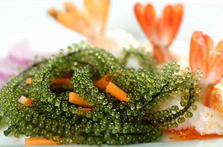 Salad Rong nho 7