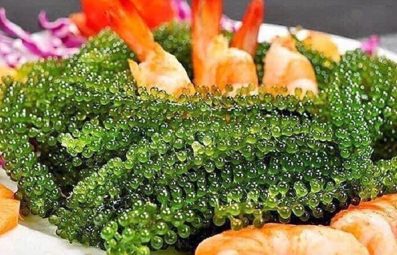 Salad Rong nho 8